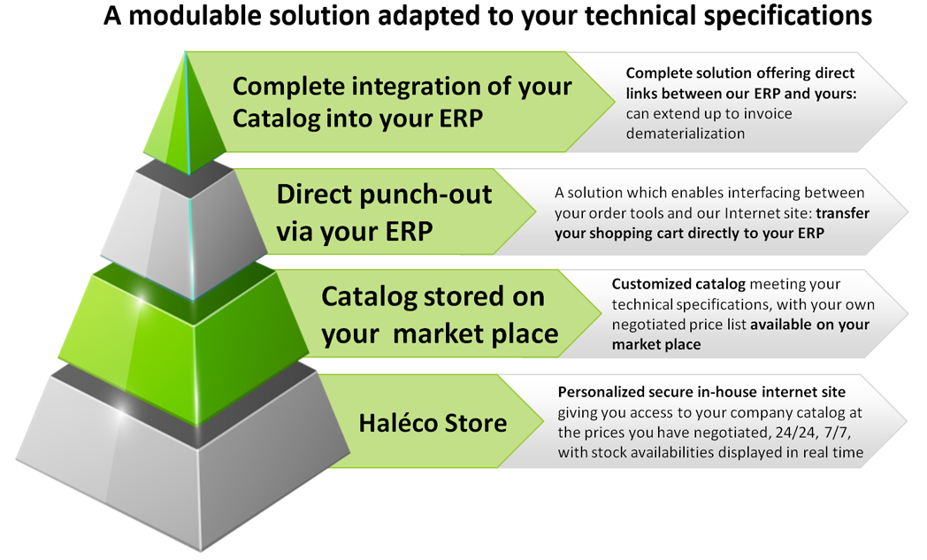 eprocurement-tailored-solution